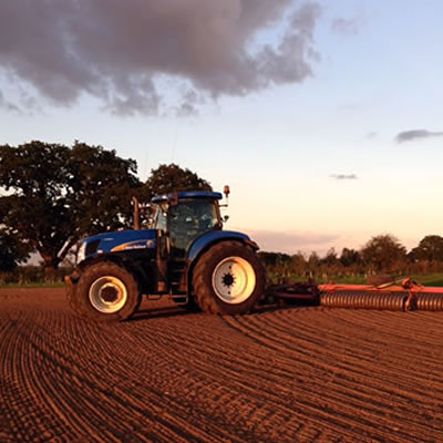 Agriculture Letting